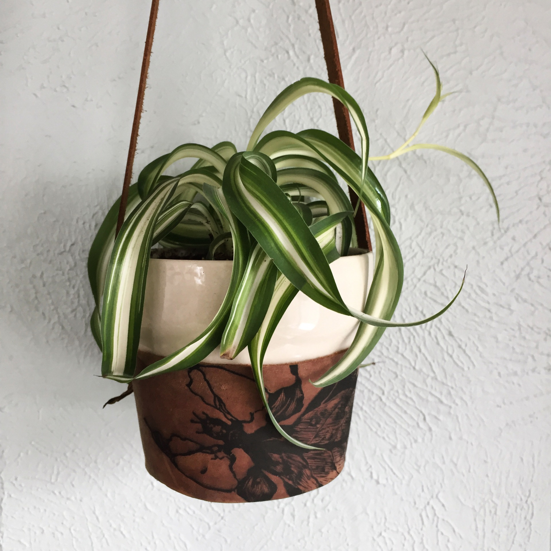 Leather Hanging Planter